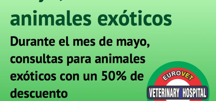 Mayo, mes de los animales exóticos en Eurovet