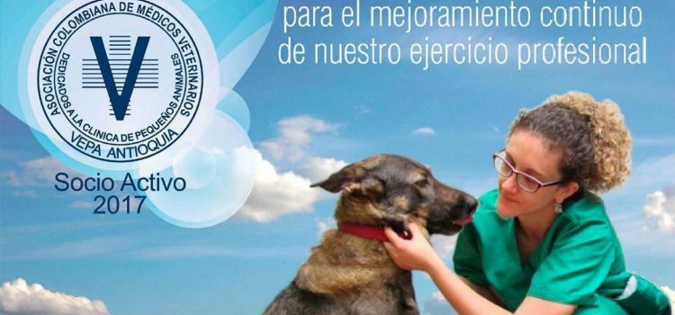 Socios activos de la Asociación Colombiana de Médicos Veterinarios