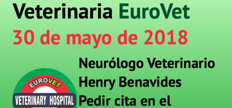30 de mayo, nueva Jornada de Neurología Veterinaria