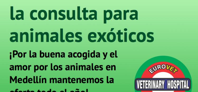 Promoción para consulta de Animales Exóticos todo el año