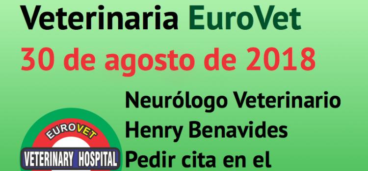 30 de agosto, nueva Jornada de Neurología Veterinaria