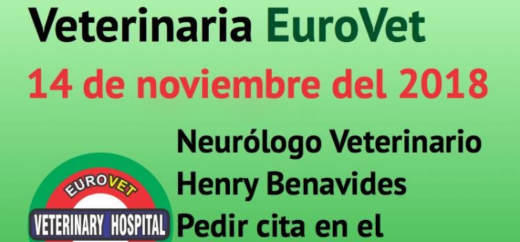 14 de noviembre, nueva Jornada de Neurología Veterinaria