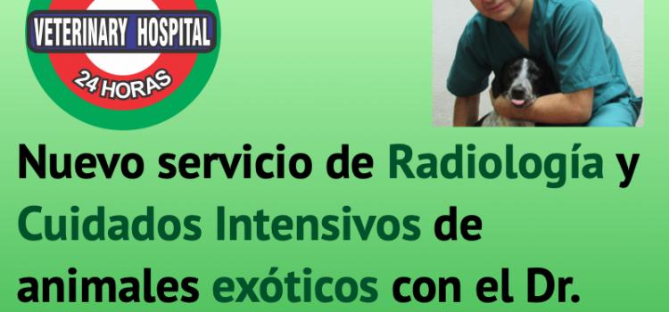 Nuevo servicio de Radiología y Cuidados Intensivos para animales exóticos