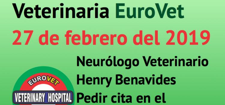 27 de febrero, nueva Jornada de Neurología Veterinaria