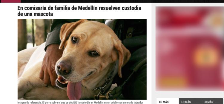 Custodia de una mascota resuelta en comisaría de familia