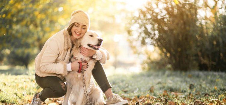 Gracias al mes de la adopción más de 400 mascotas fueron adoptadas