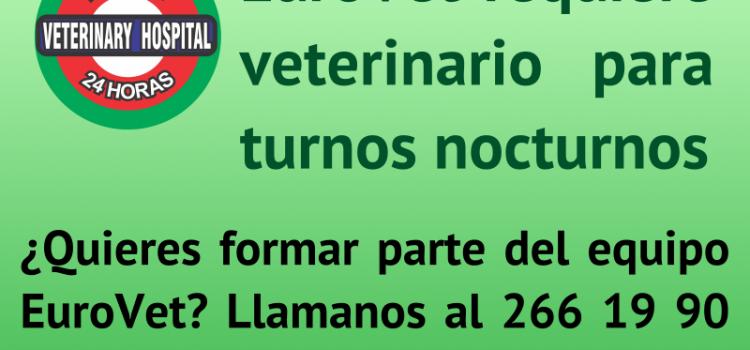 EuroVet requiere veterinario para turnos nocturnos